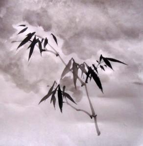 Елена Касьяненко, китайская живопись, обучение китайской живописи, Школа живописи У-Син, се-и, гунби, гун-би, бамбук под снегом