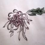 Хризантема. Елена Касьяненко, китайская живопись гохуа, гунби