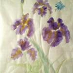 Iris zv3
