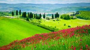 Тоскана. Италия