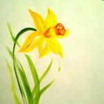 Narciss02