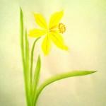 Narciss04