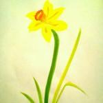 Narciss06a