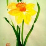 Narciss08