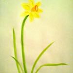 Narciss09