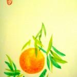Apelsin4a