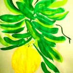 Apelsin6