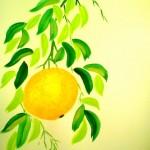 Apelsin7a