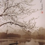 donhong-oai13_20090407_1794169423