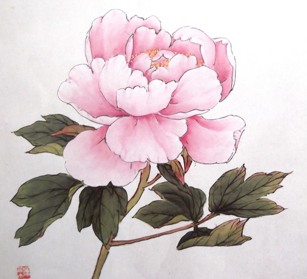 Хризантемы букет нарисовать