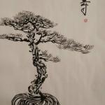 bonsai 6