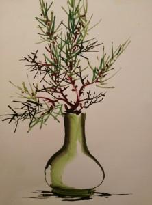 bonsai 7