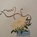 chrisantemum 2