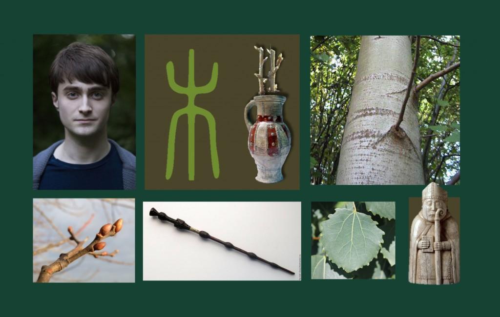 дерево презент 6